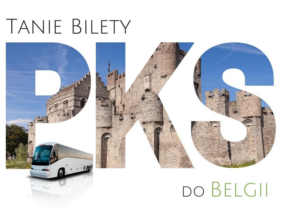 autobusy do belgii