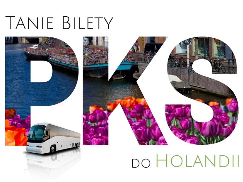 autobusy do holandii